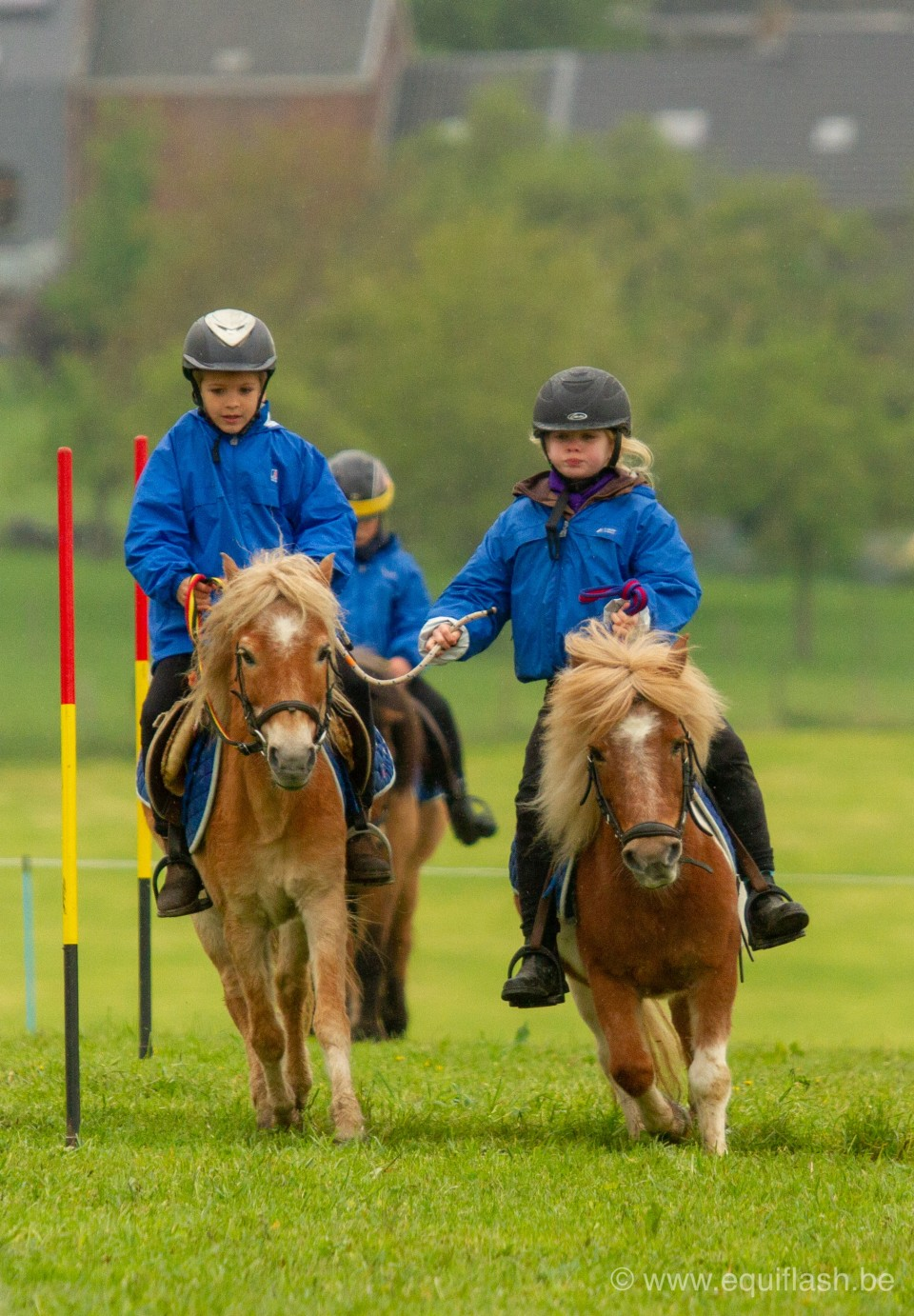 Minis du Rond-Puits - Pony Games @Equiflash.be