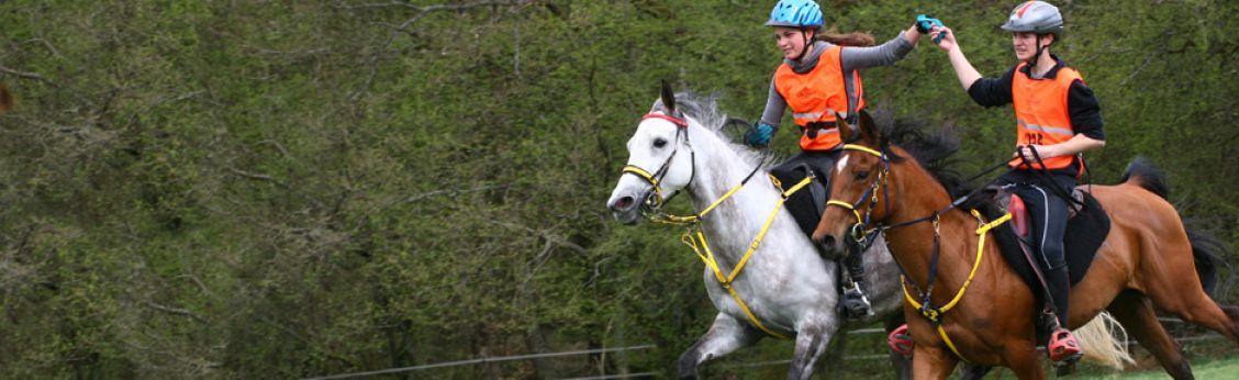 Calendrier Endurance Equestre 2021 Endurance | Ligue Equestre Wallonie Bruxelles