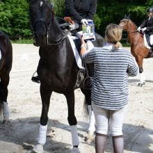 GHCR - Dressage - Coupe Cavalor 2017