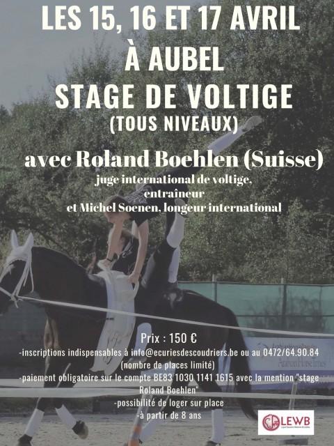 Stage de voltige avec Roland Boehlen à Aubel